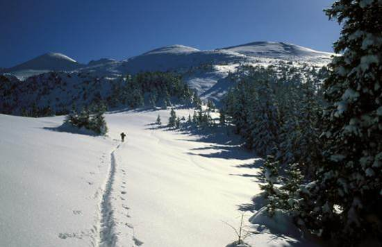 Zakopane, High Tatras, winter